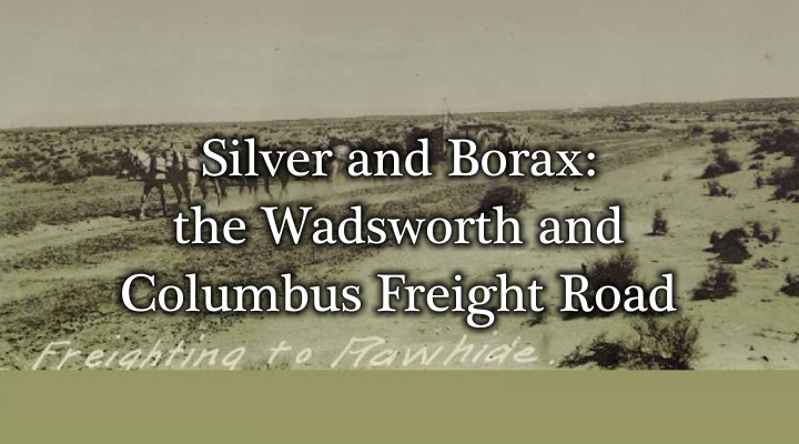 Silver and Borax
